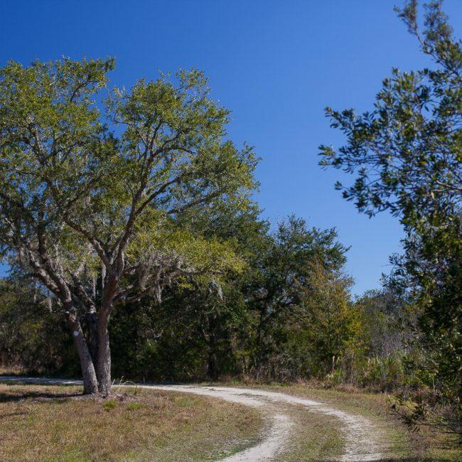 Hal Scott Preserve and Park Orlando Florida