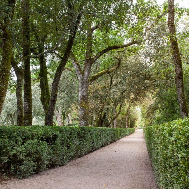 Gardens of Marqueyssac Grand Allée