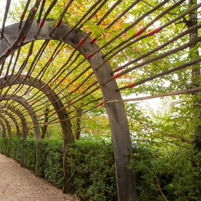 Gardens of Marqueyssac Allée des Arches wooden tunnel