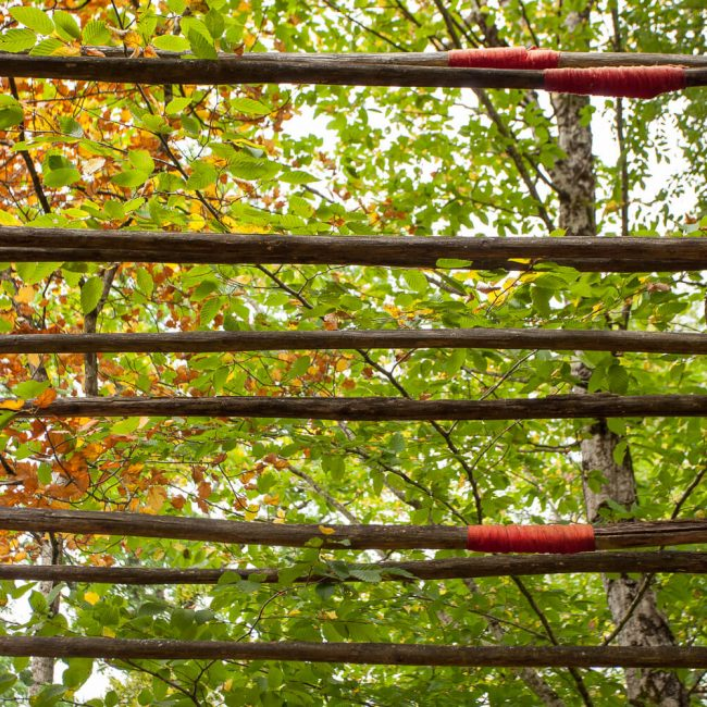 Gardens of Marqueyssac Allée des Arches