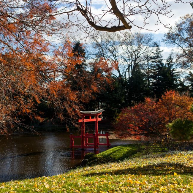 Red Torii Gate Brooklyn Botanic Garden