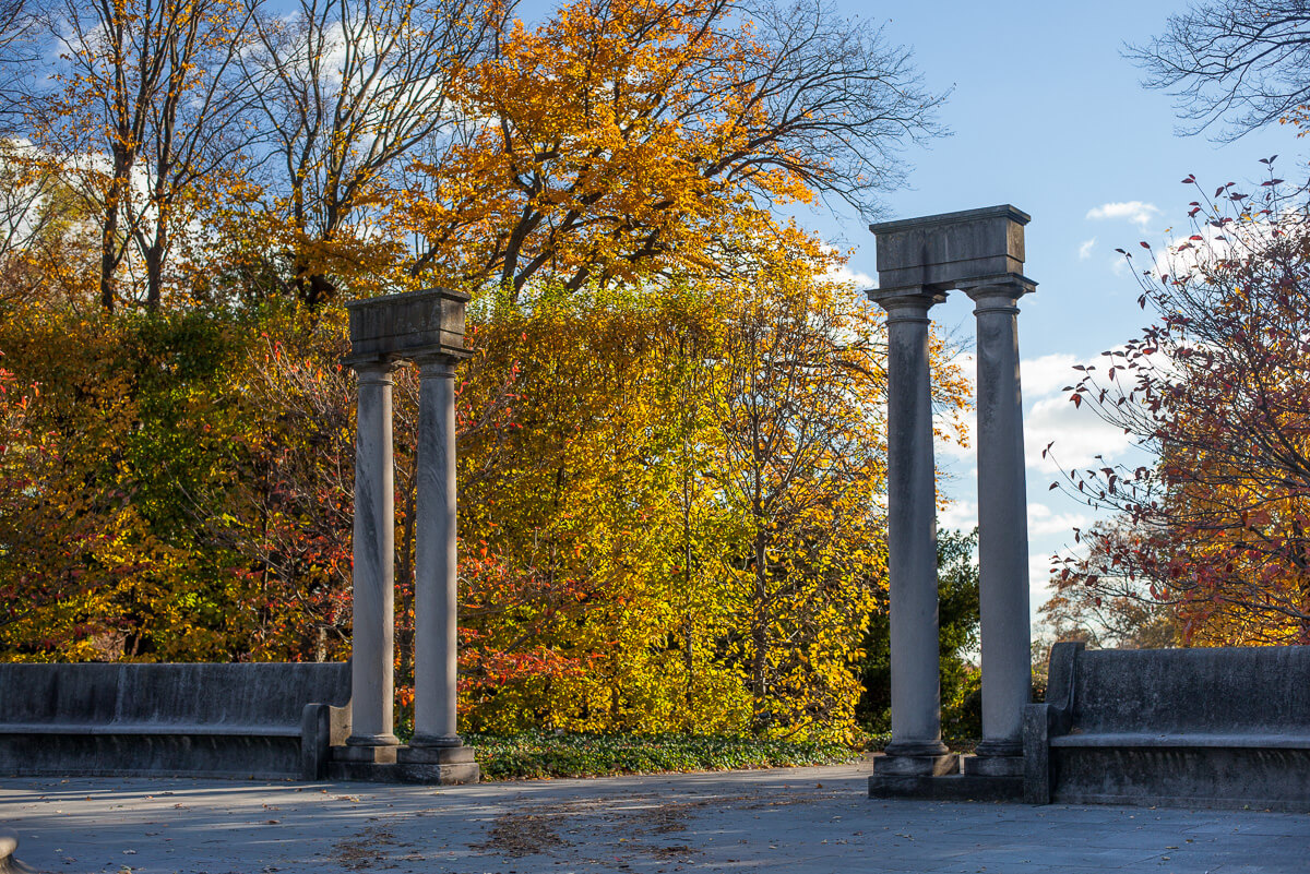 Fall Foliage at the Brooklyn Botanic Garden | Cultivated and Wild