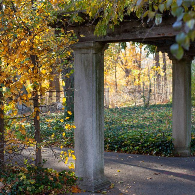 pergola osborne garden brooklyn botanic garden