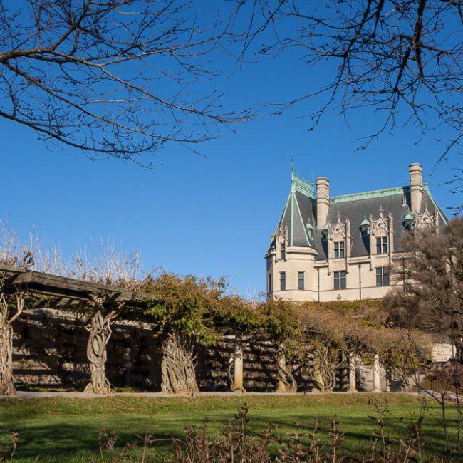 Wisteria Pergola Biltmore Garden