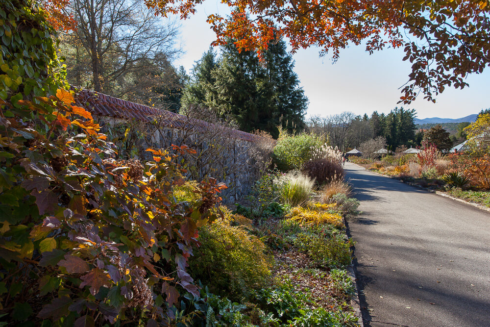 Biltmore Garden Walled Garden Fall Winter Border
