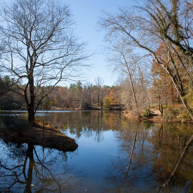 Bass Pond Biltmore Gardens