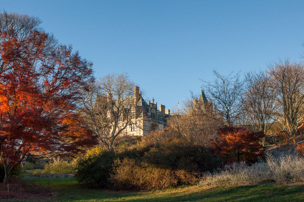 Biltmore House Shrub Garden