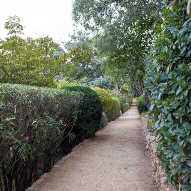 hedges Jardins de Cap Roig