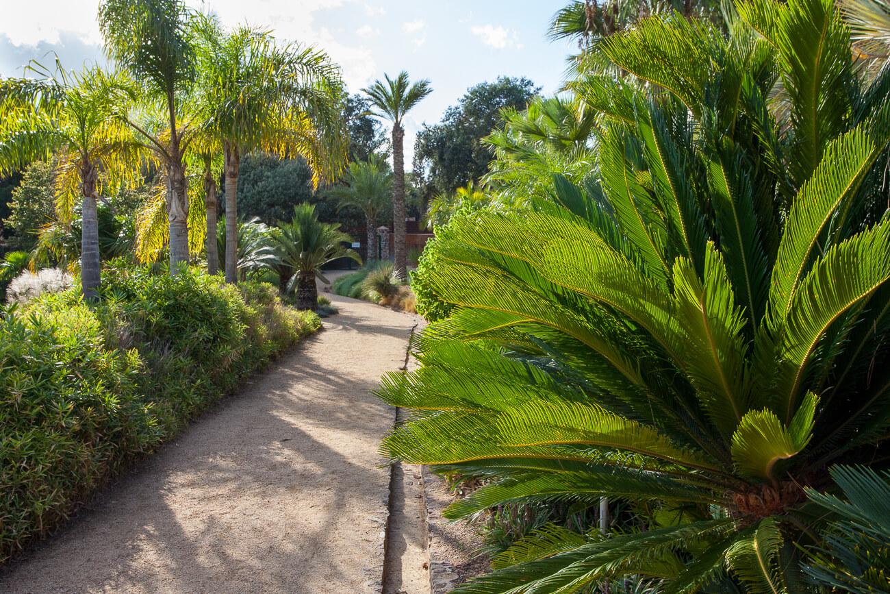 palm garden jardins de cap roig