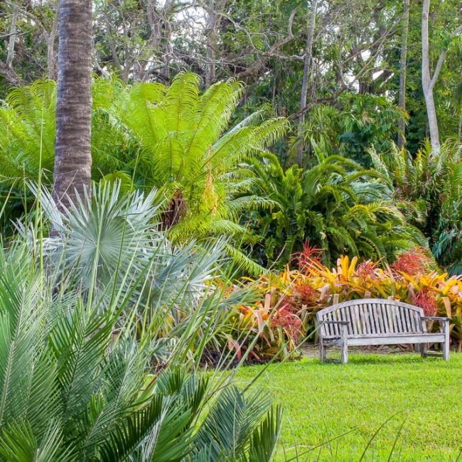 Fairchild Tropical Botanic Garden bench