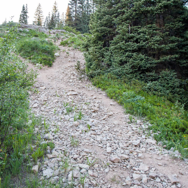 Copley Lake Trail Crested Butte