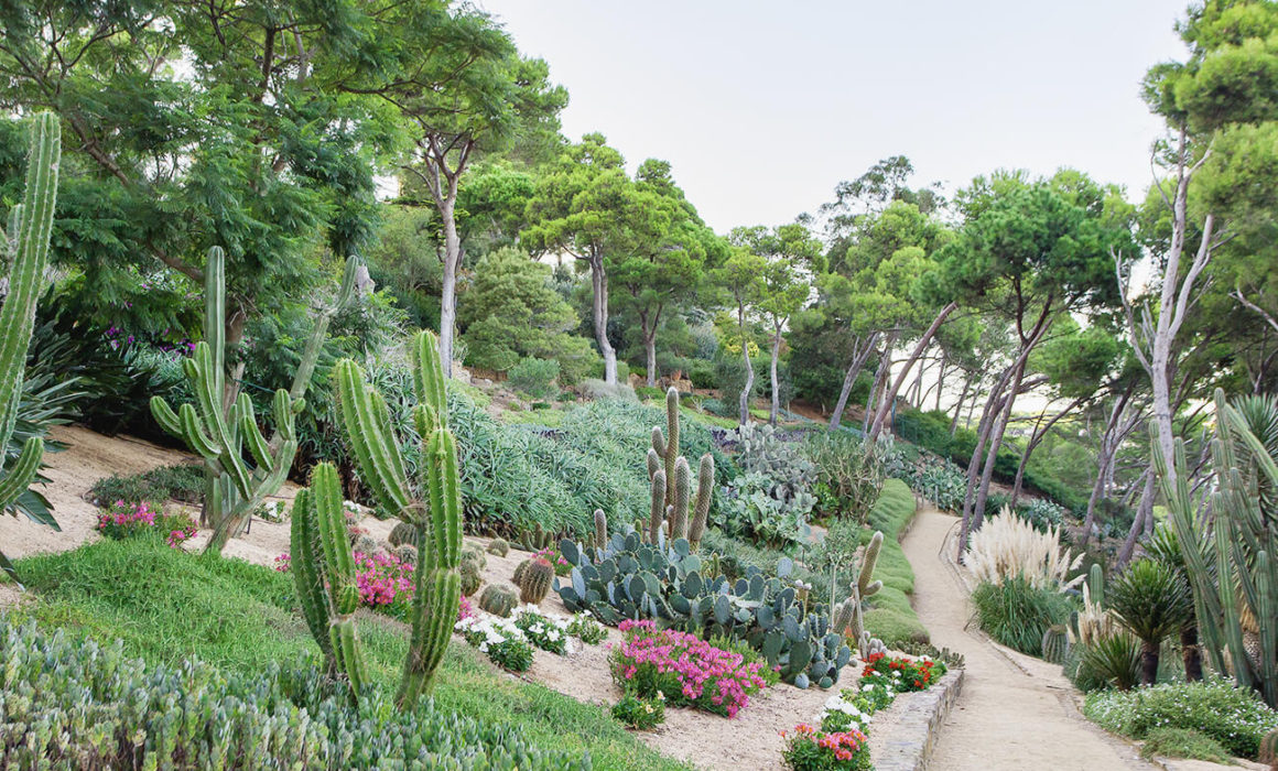 The cactus garden at Jardins de Cap Roig, spain